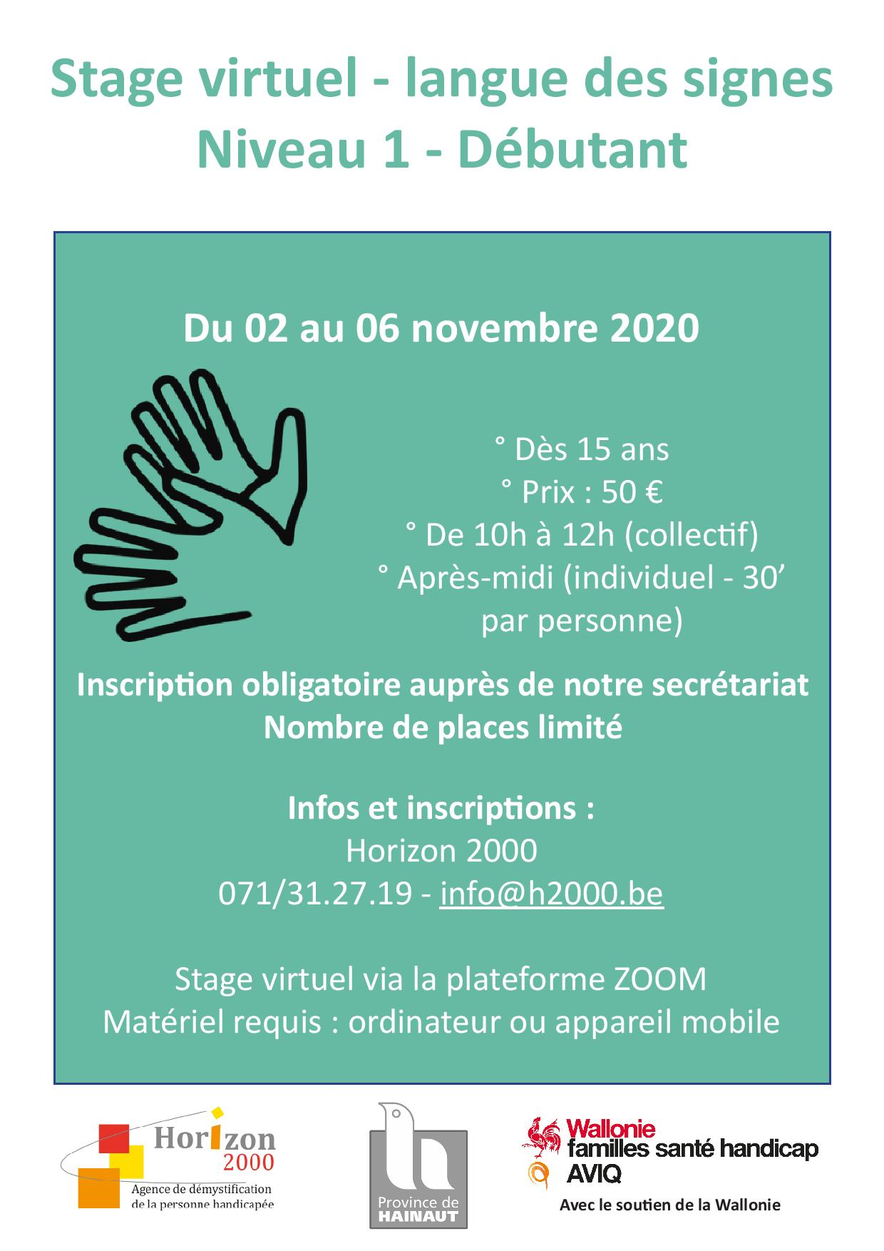 affiche stage lsfb virtuel 2020 page 001 1